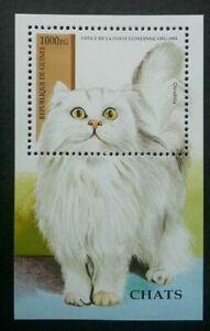 [SJ] Guinea Cats 1995 Children Pet Fauna Animal (miniature sheet) MNH