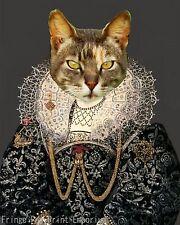 Aristocrat Cat Art Print 8 x 10 - Anthropomorphic Tudor Era Kitten in Costume