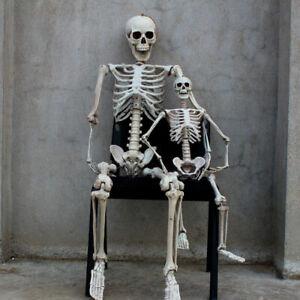 Halloween Life Size Human Skeleton Prop Horror Poseable Bone Party Decoration
