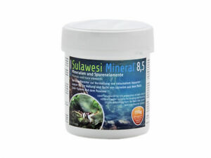 Salty Shrimp Sulawesi 8,5 Minerals and Trace Elements Cardinal Shrimp Tank