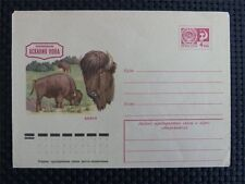 Russia Bison bisonti bisonte europeo wisente very old COVER c4732