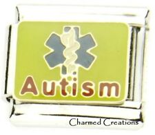 9mm Italian Charm Autism Awareness Caduceus Medical Alert Link For Bracelet