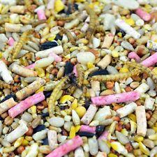 Deluxe Suet Wild Bird Seed 20KG Sack HIGH QUALITY ( Winston Wilds )