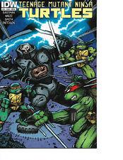 Teenage Mutant Ninja Turtles #44 Cover B Eastman Variant Death of Donatello