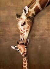 Eurographics Giraffe Mothers Kiss 1000 Piece Jigsaw EG60000301