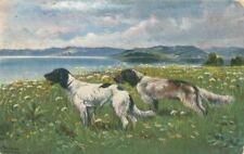 New listing Old Rare Postcard 2 Munsterlander Hunting Dogs c1910 Germany