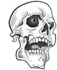 """Human Skull Bone Car Bumper Window Tool Box Sticker Decal 5""""X3"""""""