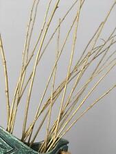 20 pcs Gold  Branches Wedding Table Florist Decor, 40cm - 60 cm,Centerpieces