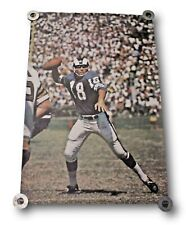 Very Rare Original 1968 Roman Gabriel Sports Illustrated Poster Los Angeles Rams