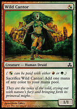 MTG Magic - (C) Guildpact - Wild Cantor - SP