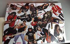 DiMarzio Guitar Pickups Accessories Specs 2009 Poster Vai Petrucci Malmsteen
