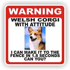 Corgi galés de Pembroke