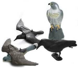Taubenschreck Vogelscheuche Taubenabwehr Vogelabwehr Falke Krähe Rabe Taube