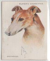 Greyhound Dog Canine Pet 1920s  Ad Trade Card