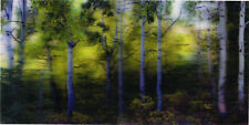 Forest Panorama - 3D Lenticular Postcard Greeting Card