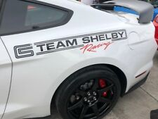 Team Shelby Racing side quarter panel  decal