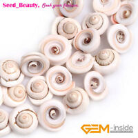 17mm Conch Natural Sea Shell Gemstone Beads Strand Jewelry Making 15""