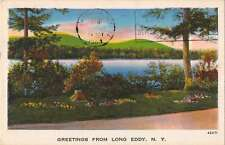 Long Eddy New York Greetings From scenic view river antique pc Y11249