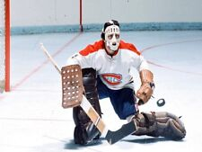 HOF Rogie Vachon Montreal Canadiens Game Action Color 8 X 10 Photo Picture