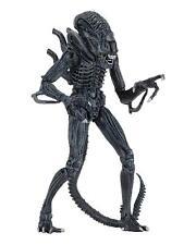 Aliens Alien Action Figure Ultimate Edition Warrior Case 23cm Blue Official NECA