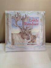 The Little Reindeer by Caroline Repchuk Hardback