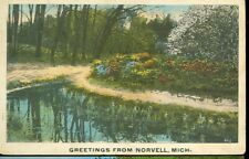 NOVELL,MICHIGAN-GREETINGS-PM1919-(MICH-NMISC)