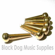 Set of six brass bridge pins for acoustic guitar *SPECIAL PRICE *£9.99*
