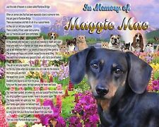Dachshund Memorial Picture-Rainbow Bridge Poem Personalized w/Pet's Name - Gift
