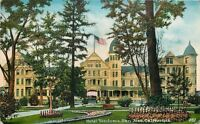 San Jose California~Hotel Vendome~Flower Bed Around Tree~1910 PC