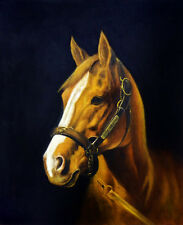 "High Quality Oill Painting ""Horse Portrait #063"" 24""x20"""