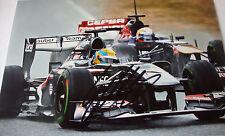 Esteban Gutierrez  SIGNED 12x8, F1 Sauber-Ferrari C32, Jerez Test 2013.
