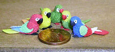 1:12 Scale 5 Small Mixed Polymer Clay Parrots Dolls House Garden Exotic Birds