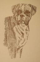 BOXER DOG Kline signed print #51 ART DRAWN FROM WORDS Your dogs name free. GIFT