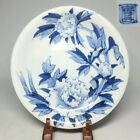 E0157: Japanese old IMARI blue-and-white porcelain ware plate with fine tone