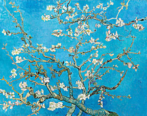 Almond Blossom by Vincent van Gogh A3 High Quality Canvas Print