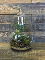 Glass pear shape 30 cm H Terrarium jar lantern planter tea light holder Handmade