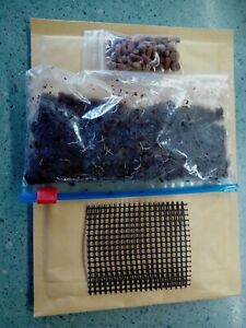 Grindal Worms starter culture approx 75g