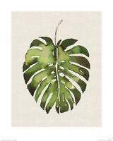 Summer Thornton - Tropical Leaf I ART PRINT 40x50cm NEW home decoration poster