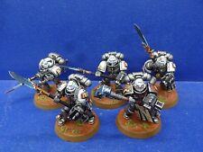 5 Mann Purifier Squad der Grey Knights GUT BEMALT