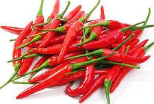 20 Thai Chili Rojo Largo Pointy PEPPER SEEDS, picante Hot Bird's Eye Chilli Tailandia