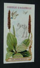 CHROMO 1900-1920 CHOCOLAT AIGUEBELLE MONASTERE DROME BONS GRAINS PLANTAIN