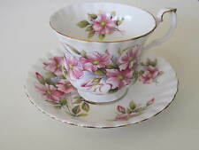 """ROYAL ALBERT ENG. CHINA  TEA CUP&SAUCER """"WILD ROSE"""" PINK MONTROSE STYLE PRE OWN"""