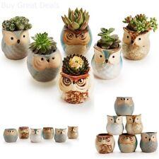 6pk 2.5in Owl Plant Flower Pot Decorative Kitchen Herb Garden Planter Container