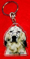 porte-cles chien setter anglais 3 dog keychain llavero perro schlusselring hund