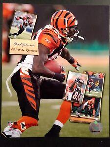 CHAD JOHNSON #85 Cincinnati Bengals SCRAPBOOK SERIES 8X10 PHOTO