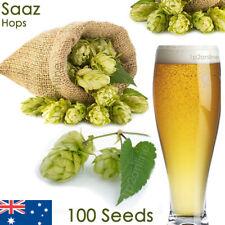100 Saaz Czech Beer Hop Seeds Humulus lupulus Saaz Hops Seed Home Brew Perennial