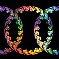 Tool - Lateralus - Limited 2 x 180gram Picture Disc Vinyl LP *NEW & SEALED*