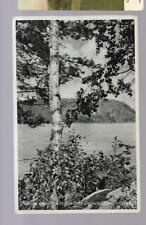 pk34309:Postcard-Mazinaw Lake,Bon Echo Rock in Distance,Cloyne,Ontario