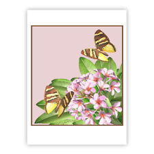 © ART  butterfly pink Frangipani Insect Flower Artist illustration Print by Di