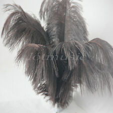 20* Brown Ostrich Feathers Real Natural Long 12~14 inch For Wedding Decorations